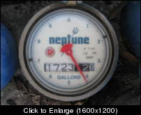 neptune 1 inch direct read analog register trident
